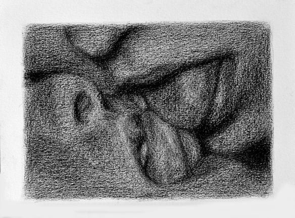 Fernando J. Ribeiro_erotic_porn_drawing_graphite_2018