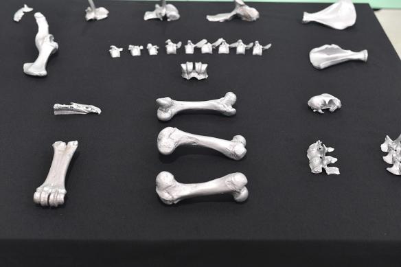 ossos-4