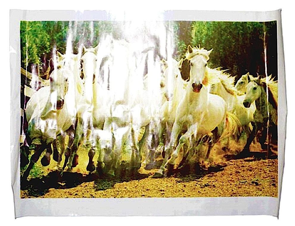 Fernando J. Ribeiro_horses poster_2012